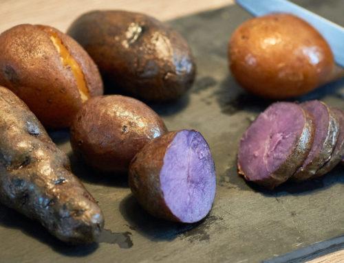 Wir testen KartoffelRaritäten!